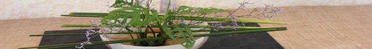 flower-akebana.jpg Guluna central Asia